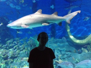 Chris & A Shark