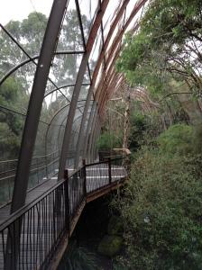 Melbourne Zoo Aviary