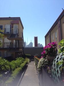 Cityview Gardens
