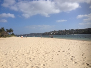 A Beach In Sydney Harbour