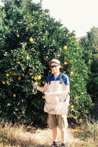 Chris Ready To Pick Oranges