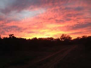 Sunrise In Hazeldell