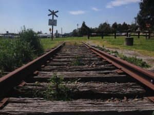 End Of The Lilydale Line