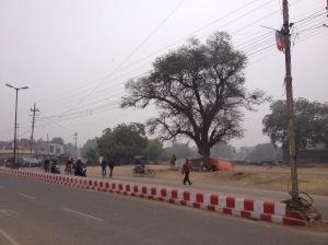 A Street In Agra