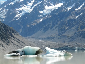 An Iceberg In Hooker Lake