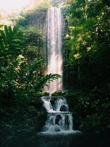 Jurong Bird Park Waterfall