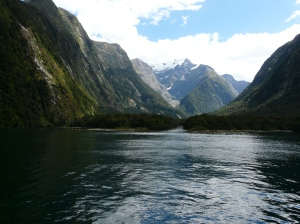 Milford Sound Wilderness Area