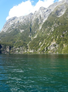 The Alpine Fault Line