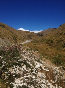 The Cardrona Pass