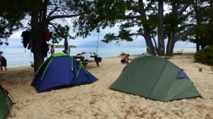 Camping At Apple Tree Bay