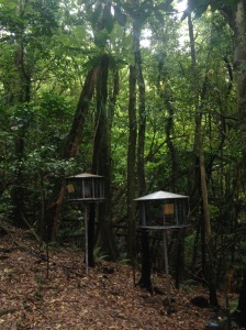 Kapiti Island Bird Feeders