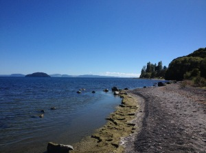Lake Taupo's Shores