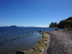 Lake Taupo's Shores