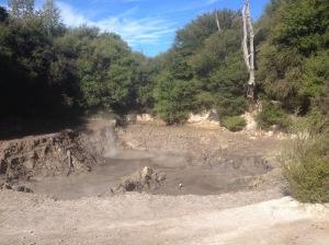 Rotorua Mud Pools