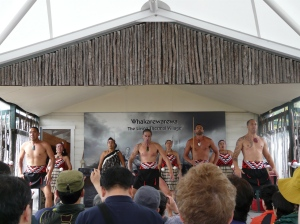 The Maori Experience