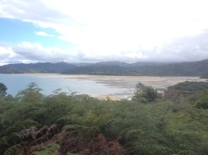 The Tidal Flats of Sandy Bay