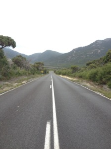 The One Road Through Wilson's Prom