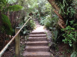 The Kokoda Memorial Trail.