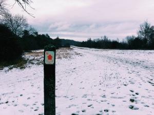 Box Hill Hike Post