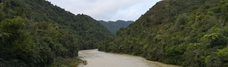 The Waioeka River
