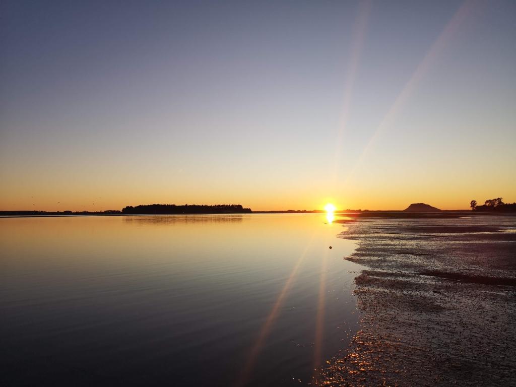 Waitui Reserve Sunrise
