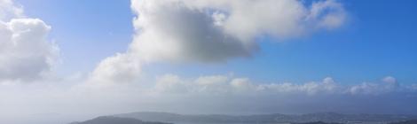 Views over Wellington